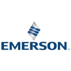 Emerson Ltd-Team Leader - Quick Ship Operations